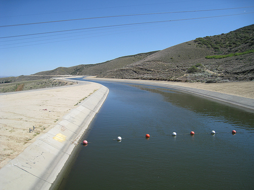 California aqueduct for Hesperia lake fishing report