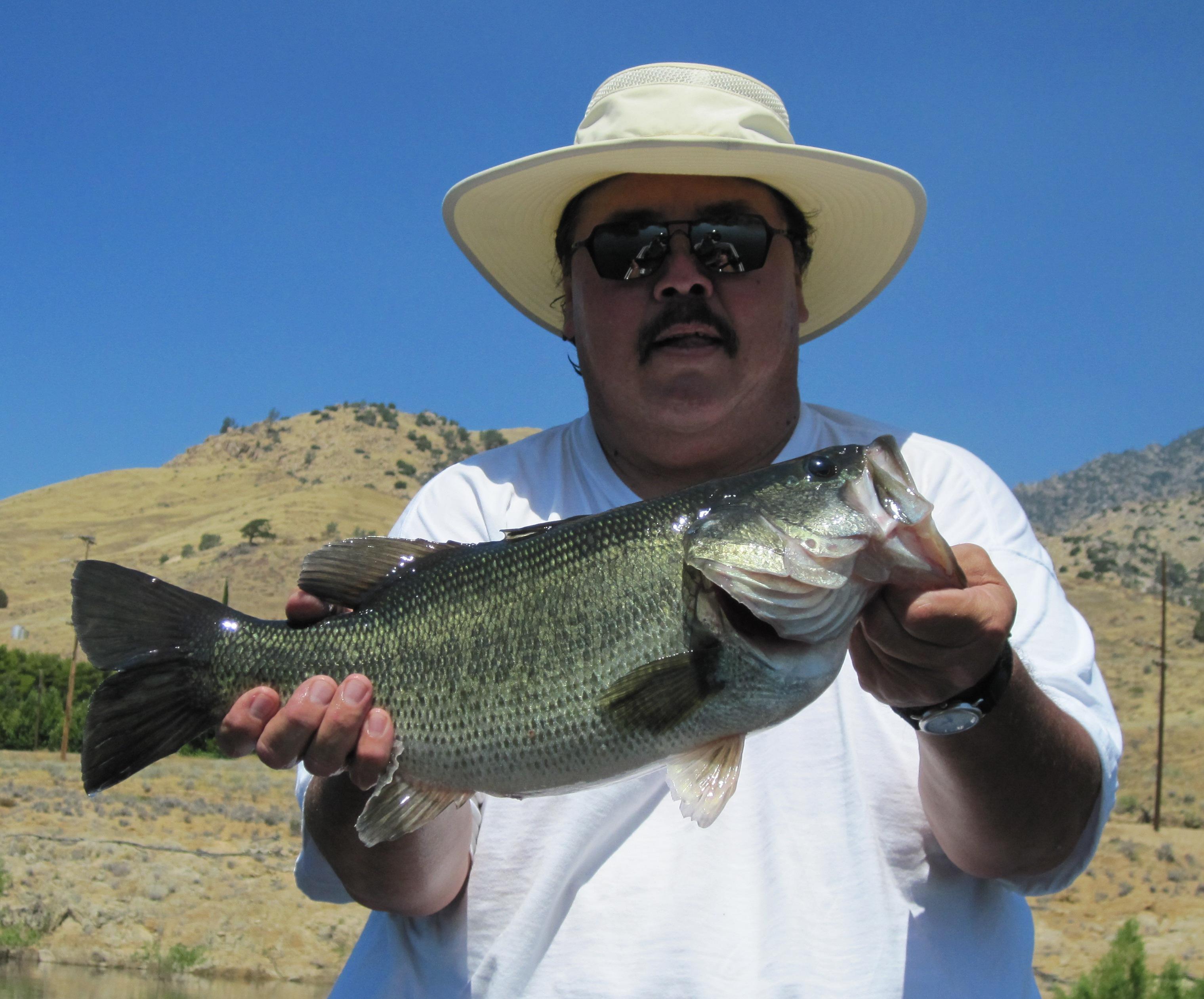Great day bass fishing at lake isabella for Bass lake ca fishing