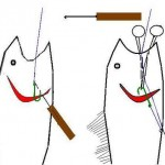 Out with the old ways of handling deep hooked bass by Rick Lawrence